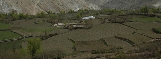 Land Acquisition: Where Lies The Promised Land?