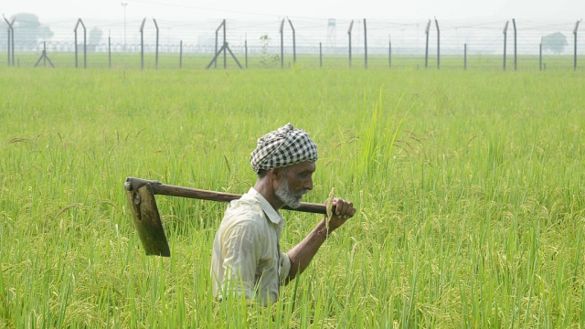 How The Left's 'Fact Free' Activism Keeps Indian Agriculture Backward And Farmers Poor