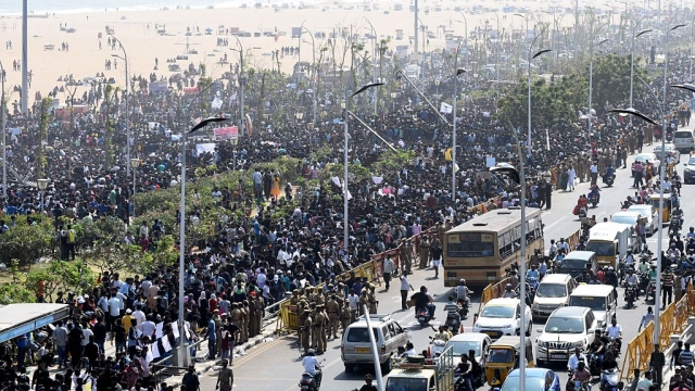 Jobs And Jallikattu: Why Youth Mutinies Are Careening Out Of Control