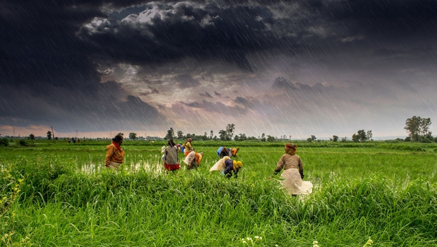 The Madhya Pradesh Agriculture Revolution: A Story Worth Emulating