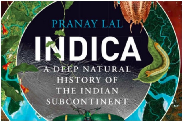 'Indica' Is A Thoroughly Enjoyable And Educative Safari Deep Into Geological History Of India