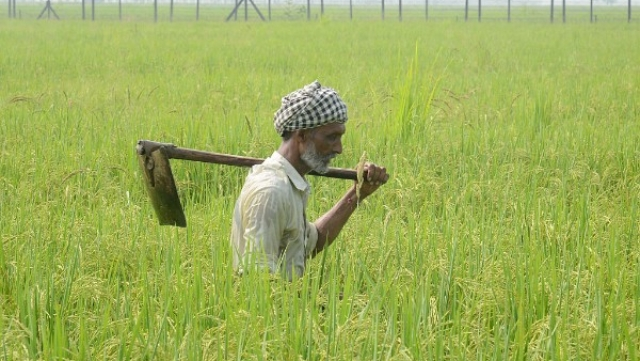 Swaminathan Commission Has All But Ignored The Root Cause Of Farmers' Plight