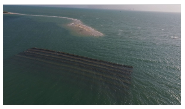 Deployed AR structure in one block in the Gulf of Mannar (Credit: India Science Wire)