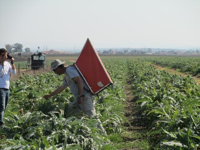 Yogi Sarkar Plans To Implement Israeli Irrigation Techniques In Farms Of Uttar Pradesh