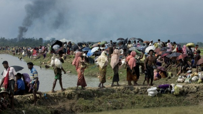 Islamic Nations Should Offer Citizenship To The Rohingya, Says RSS Functionary