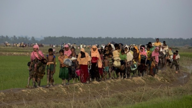 What's The Truth About The Rohingya Crisis?