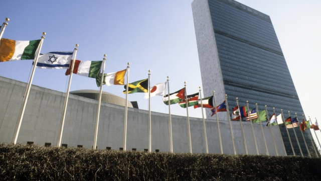 Use Of Terrorism As Instrument Of State Policy Cannot Be Tolerated: India To UN
