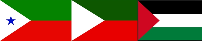 From left, flags of PFI, JKLF (Kashmir) and the Palestine movement.