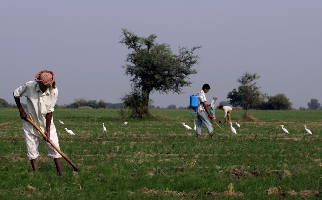In A Bid To Cultivate Fallow Land, Goa To Legalise Contract And Community Farming
