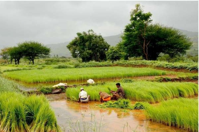 Modi Sarkar's Strategy To Bluff Its Way Out Of Farm Stress Can Prove Costly