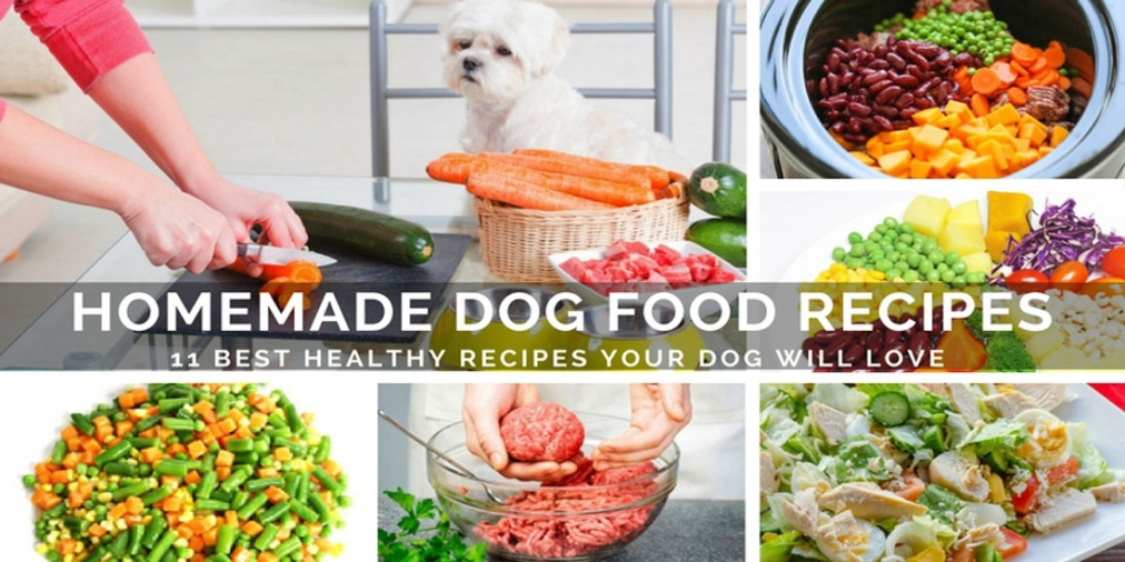 11 best healthy homemade dog food recipes your dog will love forumfinder Choice Image